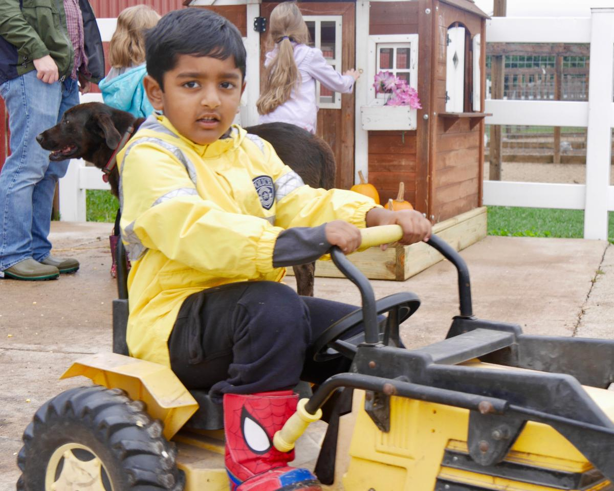 Preschool boy on tractor